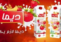 boite_communication_algerie_06.jpg